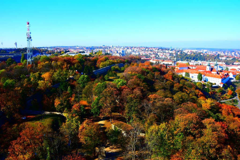 Прага Осень Чехия Природа Деревья