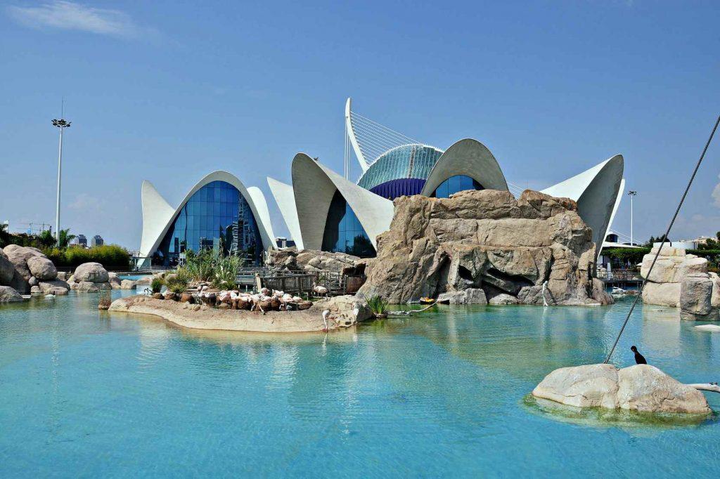 что посмотреть в испании за неделю самостоятельно - океанариум в валенсии